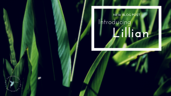 Lillian Hood psychotherapy in wilmington, nc anxiety therapy trauma counseling substance abuse counseling